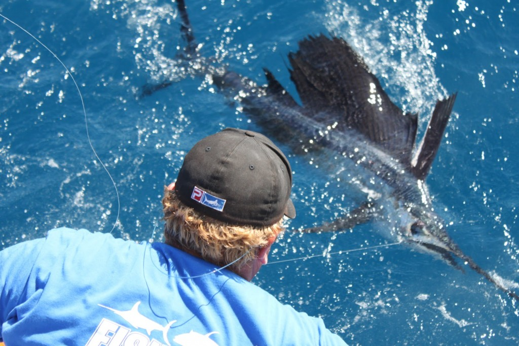 Chris Pulls a Sailfish On Reel Candy Charter