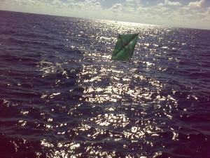 Kite Fishing Jupiter, Stuart, Palm Beach, Bahamas