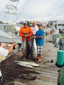 79 & 60 pound yellowfin tuna